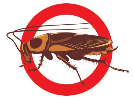 дезинсекция от тараканов в комнате