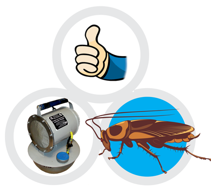 служба избавления от тараканов