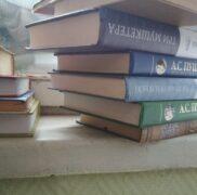 Клопы на книгах